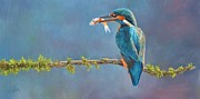 Water Birds Prints - Catch of the Day Print by David Stribbling