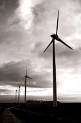 Turbines Photos - Catch the Wind by Olivier Le Queinec