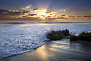Beach Scenery Prints - Catching the Light Print by Debra and Dave Vanderlaan