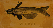 Catfish Mixed Media Prints - Catfish Plaque Print by R Kyllo