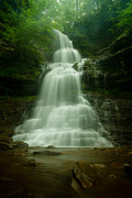 Green Forest Photos - Cathedral Falls by Shane Holsclaw