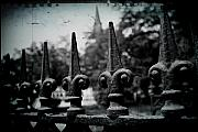 Fleur De Lis Art - Cathedral Fence by Scott Pellegrin