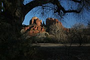 Sedona Pyrography Framed Prints - Cathedral Rock Framed Print by Pat Marzinsky
