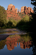 Red Rock Crossing Framed Prints - Cathedral Rock Reflection 4 Framed Print by Lee Kirchhevel