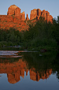 Red Rock Crossing Framed Prints - Cathedral Rock Reflection 5 Framed Print by Lee Kirchhevel