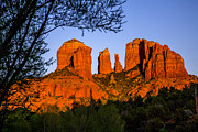 Red Rock Crossing Pyrography Prints - Cathedral Rock Sunset in Sedona Print by Mark Greenawalt