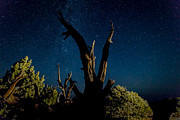 Cathedral Valley Night Sky Print by Jennifer Grover