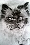 Featured Drawings - Catnip Blues by Brian Horsley