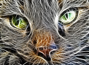 Kitten Digital Art - Cats Face Fractal by Antony McAulay