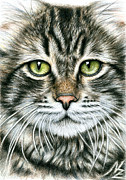 Chat Posters - Cats Face Poster by Nicole Zeug