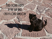 J R Baldini M Photog CR - CATS of GREECE #1