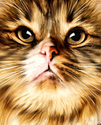 Cat Art Digital Art Prints - Cats Perception Print by Lourry Legarde