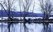 Tree Reflections In Water Posters - Catskill Mountains and Wallkill River   Poster by Alison Perry
