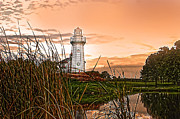 Aluminum Framed Prints Prints - Cattails and Lighthouse In Indiana Print by Randall Branham