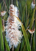 Mary McCullah - Cattails and Wrens