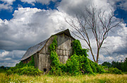 Farmlife Prints - Cattaraugus County Barn 6160 Print by Guy Whiteley