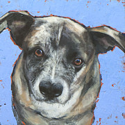 Cattle Painting Posters - Cattle Dog Poster by Mary Medrano