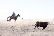 Ranch Life Prints - Cattle Drive Print by Cindy Singleton
