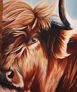 Steer Paintings - Cattle No. 1 by Kimberly VanDenBerg