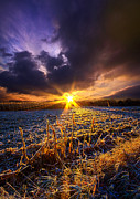 Phil Koch - Caught Inbetween