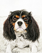 Playful Pastels Framed Prints - Cavalier King Charles Spaniel Painting Framed Print by Kate Sumners
