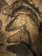 Face Prints - Cave Paintings Print by Javier Trueba and SPL and Photo Researchers