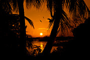 James Jenks - Cayman Brac sunset