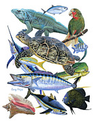 Green Turtle Posters - Cayman collage Poster by Carey Chen