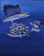 Striped Marlin Prints - Cayman Reef 5 OFF00127 Print by Carey Chen