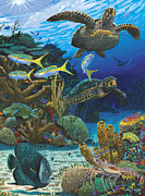 Green Turtle Posters - Cayman Turtles Re0010 Poster by Carey Chen