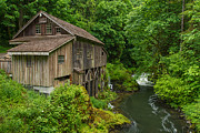 Cedar River Framed Prints - Cedar Grist Mill Framed Print by Patricia  Davidson