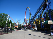 Mantis Photos - Cedar Point - Mantis - 12121 by DC Photographer