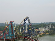 Mantis Prints - Cedar Point - Mantis - 121212 Print by DC Photographer