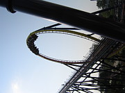 Ohio Posters - Cedar Point - Mantis - 12127 Poster by DC Photographer