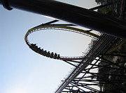 Mantis Photos - Cedar Point - Mantis - 12129 by DC Photographer