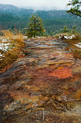 Rock Photos Posters - Cedar Rock Trail Poster by Bruce Siulinski