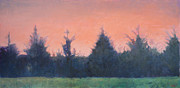 Cedars Paintings - Cedars Along St. Marys in Hillsborough by Jude Lobe