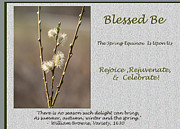 Andrew Govan Dantzler Art - Celebrate The Spring Equinox card by Andrew Govan Dantzler
