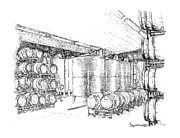 Cellar Drawings Prints - Cellars of Marynissen Winery Print by Steve Knapp