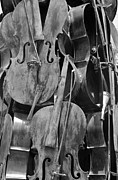 Strings Digital Art Posters - Cellos Black And White Poster by Rob Hans