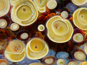 Photography Prints Glass Art Prints - Cellular Print by Jubilant Glass And Art