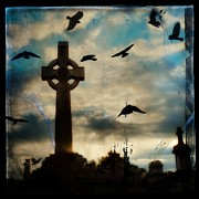 Ravens Posters - Celtic Blue Poster by Gothicolors And Crows
