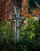 Gothic Cross Posters - Celtic Cross in Foliage Poster by Sonja Quintero