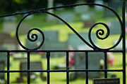 Stones Prints - Cemetery Gate Print by Amy Cicconi