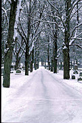 Gail Maloney Prints - Cemetery in Snow Print by Gail Maloney