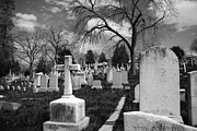 Headstones Framed Prints - Cemetery Solitude Framed Print by Jennifer Lyon