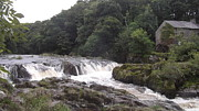 John Williams - Cenarth Falls 9
