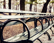 Central Park Prints - Central Park Bench Print by Lisa Russo