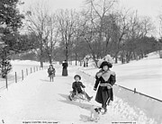 Ice Skating Photos - Central Park in New York by Anonymous