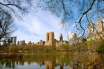 Greens Framed Prints - Central Park in Spring Framed Print by Eric Dewar